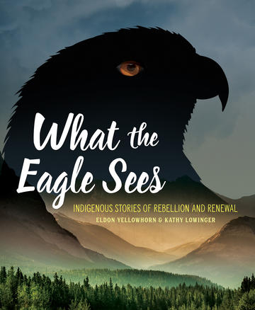 What the Eagle Sees